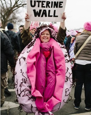 Woman Uterine Wall