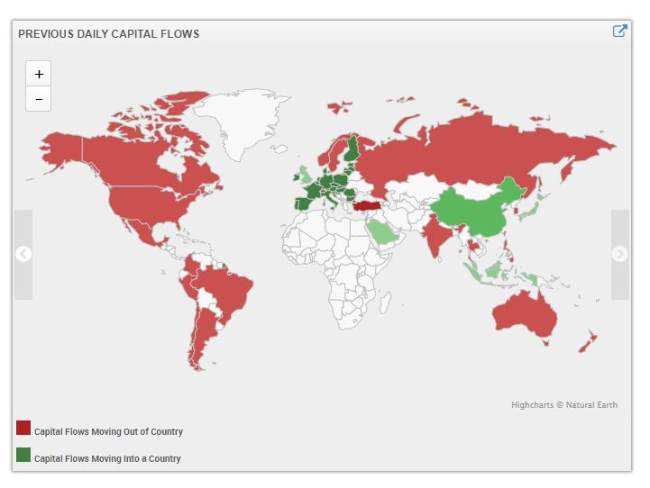 Capital Flow Movements